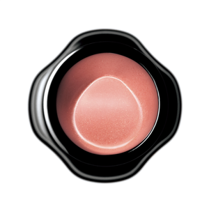 Shiseido New Perfect Rouge BE740 Vision 4g