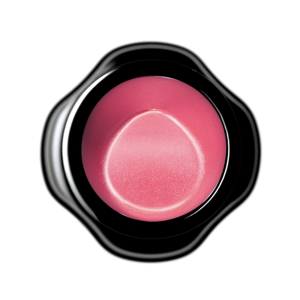 Shiseido New Perfect Rouge PK307 Tourmaline 4g