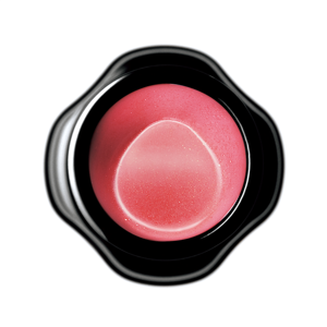 Shiseido New Perfect Rouge PK343 Secret 4g