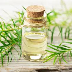 Beauty Formulas tea tree blackhead clearing facial scrub peeling oczyszczający do twarzy olejek drzewa herbacianego
