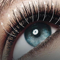lashes booster by oceanic