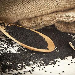 Targroch olej z czarnuszki tłoczony na zimno