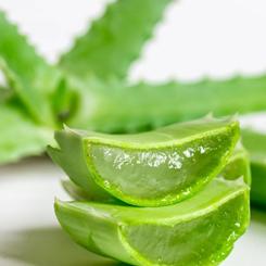 Garnier Skin Naturals Hyaluronic Aloe Toner
